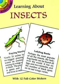 Learning about Insects (Dover Little Activity Books) -- Paperback / softback