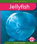 Jellyfish (First Reports)