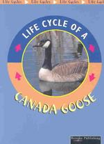 Canada Goose (Life Cycles)