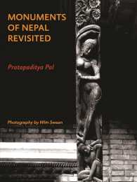Monuments of Nepal Revisited