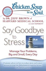 Chicken Soup for the Soul Say Goodbye to Stress : Manage Your Problems, Big and Small, Every Day (Chicken Soup for the Soul)