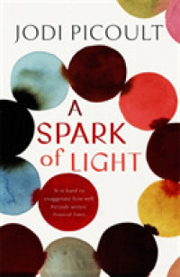 Spark of Light -- Paperback (English Language Edition)