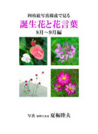 紀伊國屋書店BookWebで買える「四枚組写真構成で見る誕生花と花言葉8?9月編」の画像です。価格は540円になります。