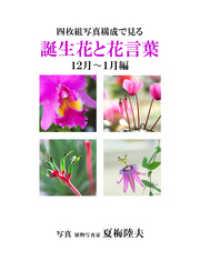 紀伊國屋書店BookWebで買える「四枚組写真構成で見る誕生花と花言葉12?1月編」の画像です。価格は540円になります。