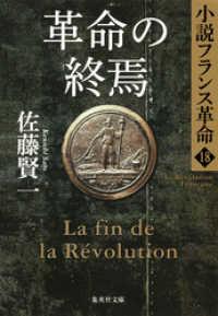 革命の終焉 小説フランス革命18