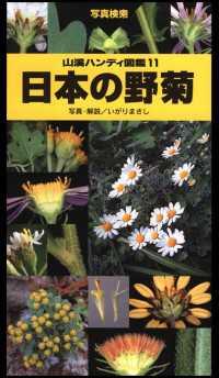 11 日本の野菊