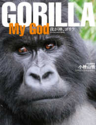 GORILLA My God SUN MAGAZINE MOOK
