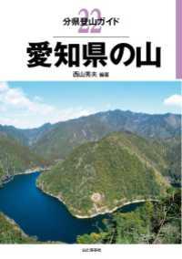 22 愛知県の山