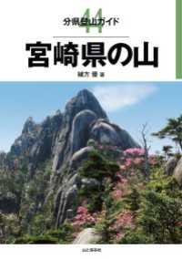 44 宮崎県の山
