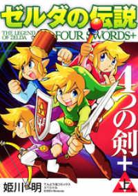 ゼルダの伝説 4つの剣+ 上巻