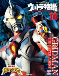 ウルトラ特撮PERFECT MOOK vol.16 電光超人グリッドマン