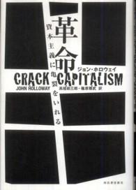 革命資本主義に亀裂をいれる