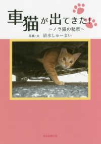 車猫が出てきた!~ノラ猫の秘密~