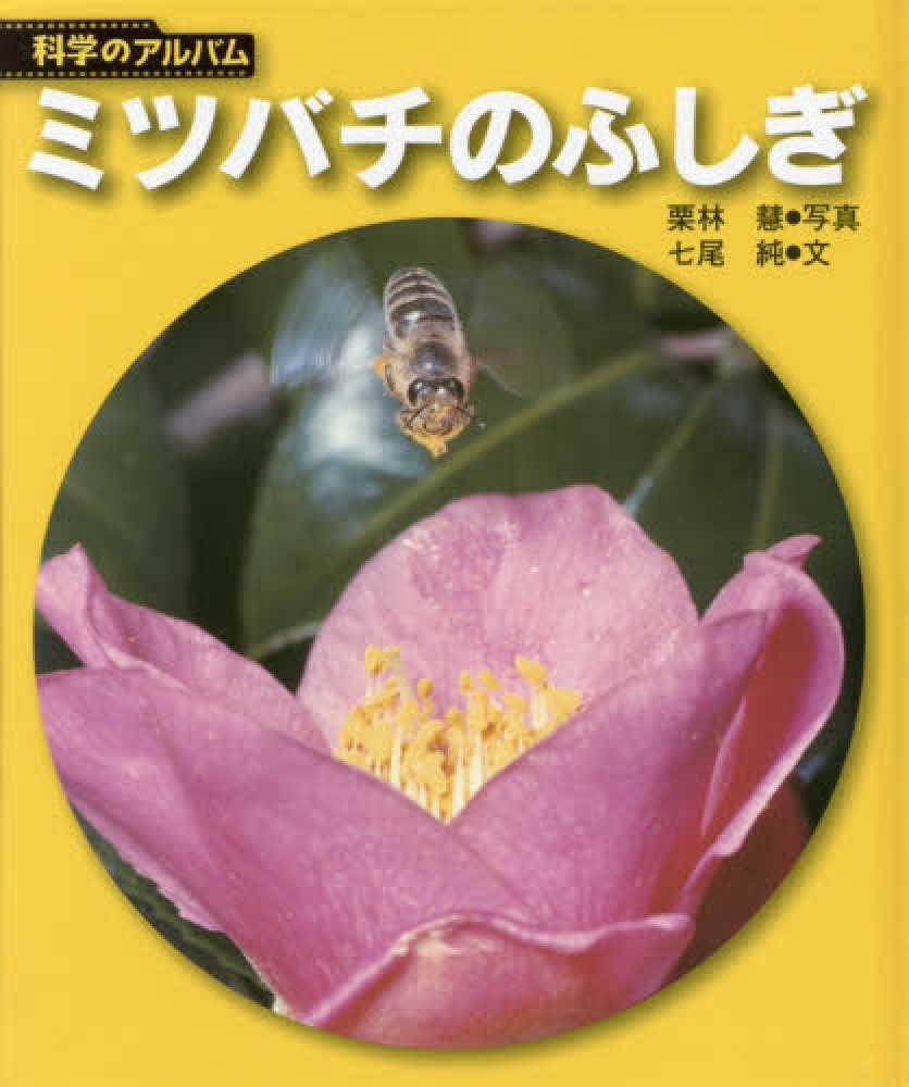 ミツバチのふしぎ / 栗林 慧【写...