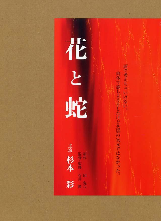 杉本彩の画像 p1_31